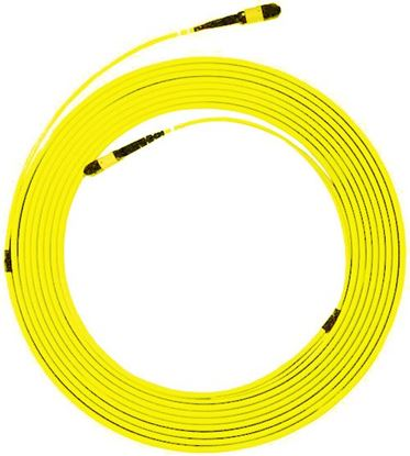 Picture of DYNAMIX 100M MPO APC ELITE Trunk Single-mode Fibre Cable. POLARITY C