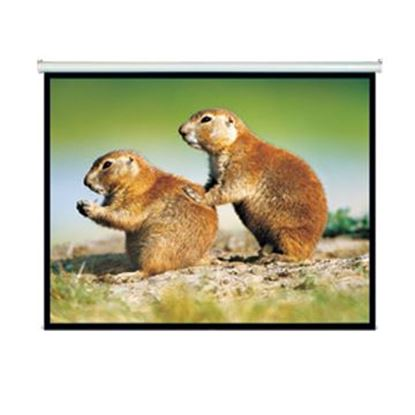 "Picture of BRATECK 150"" Projector Screen, Manual Self Locking, Matte Finish."