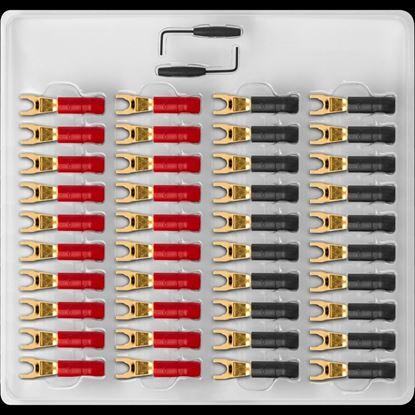 Picture of AUDIOQUEST mulit-spade 40 tray gold .SureGrip 300, gold over beryllium-